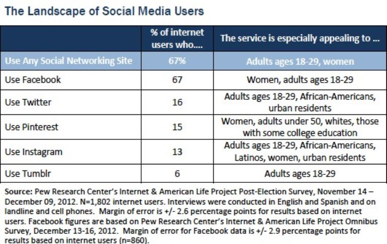 The Landscape of Social Media Users